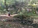 Forêt des Colette - Oct. 2017 _11